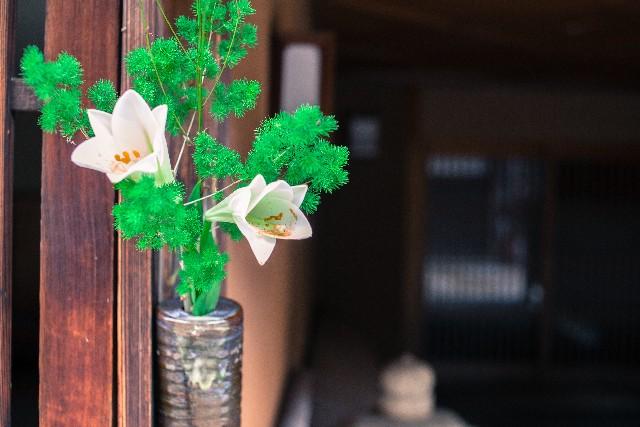 玄関に植物を置く